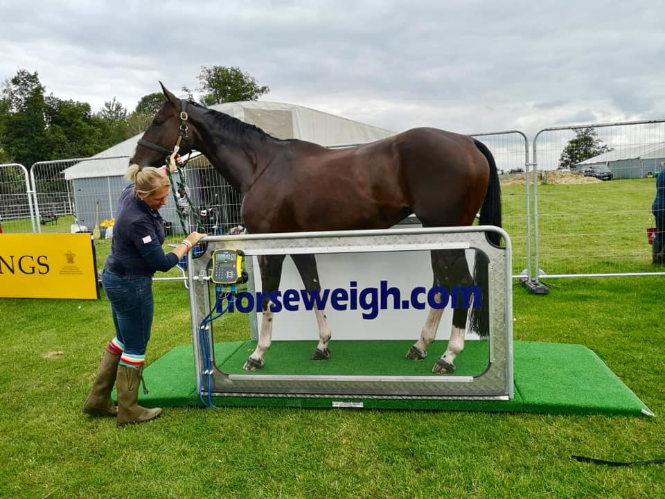 Burghley Horse Trials 2019