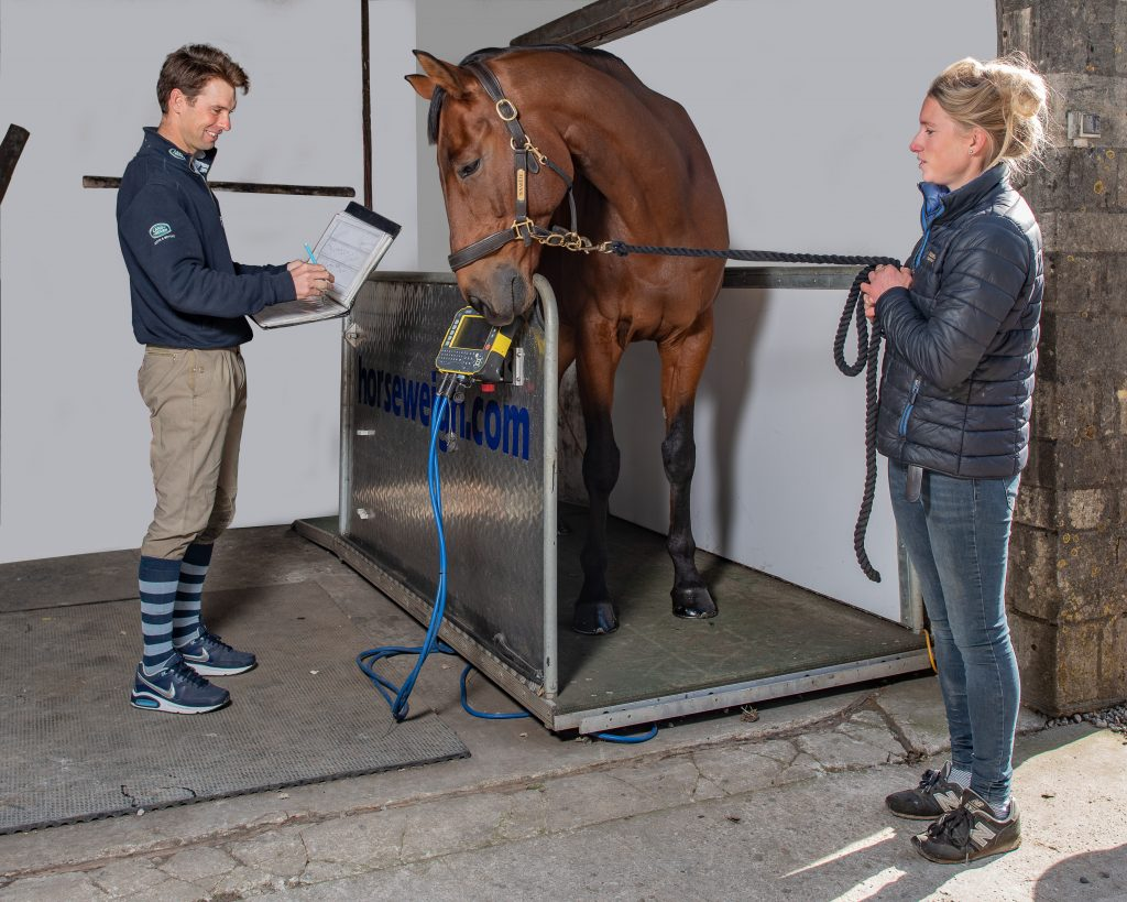 Harry Meade Horse Weighing